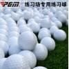 高尔夫球厂家 GOLF练习球 高尔夫双层练习球 空白