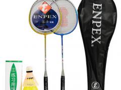 乐士(Enpex)羽毛球拍对拍 休闲旅游情侣羽拍001送3只装羽毛球