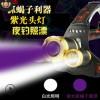 三头蝎子头灯 USB双芯T6紫光双Q5白光 照漂夜钓紫光头灯抓蝎子灯