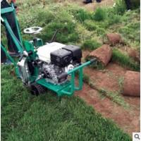 上德机械起草皮机 汽油动力果岭草坪切块移植马尼拉草坪移植机