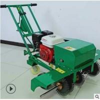 汽油手推式草皮划线机 人工种植草皮移植养护机 草皮切边机现货