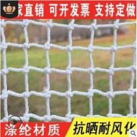 阻燃建筑安全网厂家直销 施工防护防坠网白色安全平网 涤纶绳网