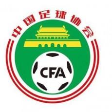 足协:推动职业联赛理事会成立 促进联赛健康发展