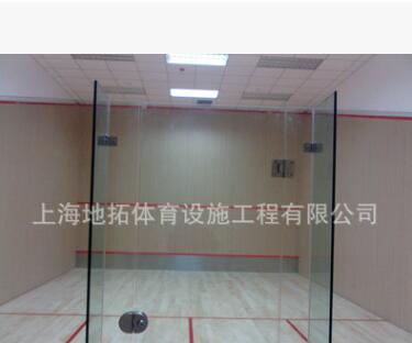 厂家批发 壁球馆设施 壁球馆施工 壁球馆要求 施工壁球馆工艺