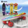 厂家批发滑板车 儿童成人枫木小鱼板 初学者刷街公路板 四轮滑板
