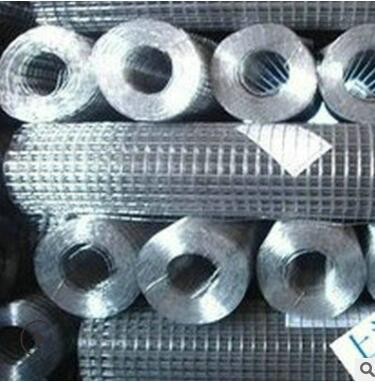厂家直 销镀塑铁丝网 鸡笼铁丝网 六角编织网防护网质优价廉