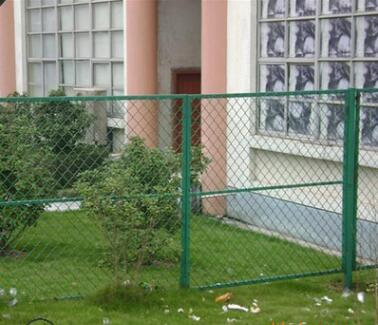 厂家直销绿色养鸡养殖网户外铁丝网平纹编织铁丝围栏网质优价廉