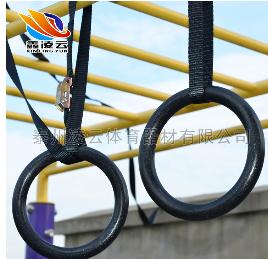 供应 ABS标准吊环 引体向上训练健身家用吊环 室内abs体操吊环