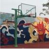 金陵篮球架 固定式单臂篮球架 埋地式 配高强度玻璃篮板